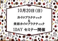 10月20日(日) 1DAY 教室 カイロプラクティック&美容カイロプラクティック の画像